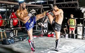 The 10 Best Muay Thai Shin Guards In 2019 Muay Thai Citizen