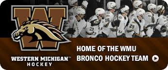 Image result for wmu hockey