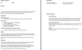 What Should A College Resume Look Like Fascinating What To Put In A Resumes Bino48terrainsco