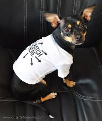 the coolest thing about this project is that it teaches you how to put your own graphics on the shirt so your dog can be fashionable and warm at the same