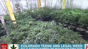 will colorado see pot problems