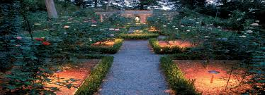 choose the right garden lighting and cast a magical effect