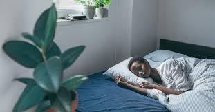 why do we sleep what happens during sleep