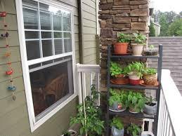 apartment herb garden balcony. Beautiful Apartment Types Balcony Herb Garden Ideas 722 Hostelgarden Throughout Apartment P