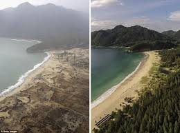 How 2004 indian ocean earthquake became the deadliest in history. Memorial Services Held To Mark 10th Anniversary Of Boxing Day Tsunami That Killed 270 000 Daily Mail Online