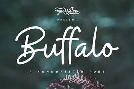 this beautiful handwritten script font features both uppercase and lowercase letters with numbers and punctuations it s the perfect font for designing