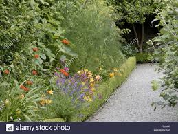 The Kitchen Garden Path In The Kitchen Garden With A Bed Of Red Lychnis Lavender