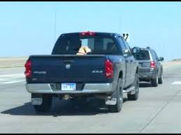 Is It Safe For Dogs In Back of Truck - YouTube