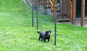 outdoor dog gates australia fence ideas affordable fencing run plans temporary