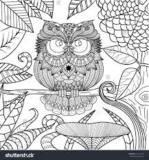 owl drawing for coloring book