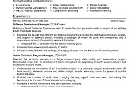 Headline Resume Examples Literarywondrouse Headline Example For Mechanical Engineer Examples 55