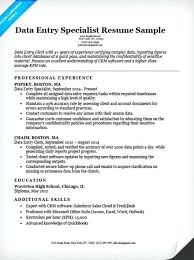 Sample Salesforce Resume Data Entry Resume Example Resume Companion
