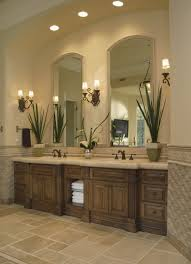 unbelievable wooden vanity bathroom lights brown simple decoration motive plant green adjule