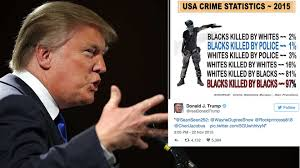 Image result for trump racist image