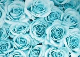 blue flowers background tumblr. Fine Background Rose Blue And Flowers Image And Blue Flowers Background Tumblr F