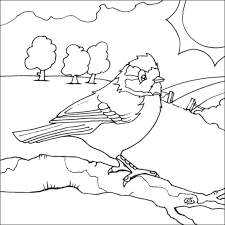 Small Picture Index of birdcolouringpages