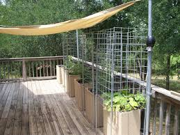 peculiar for more tips on vegetable see our vegetable garden planting your vegetable garden martha