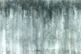 concrete wall finishes stained concrete wall concrete wall finishes large image for water stained concrete wall finishes decorative forms