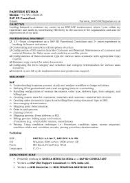 Sap Sd Consultant Resume Sample