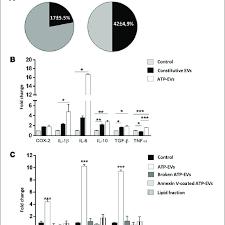 Atp Evs Activate Recipient Astrocytes Stronger A Pie
