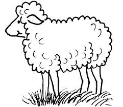 Coloriage Mouton Les Beaux Dessins De Imprimer Et Colorier
