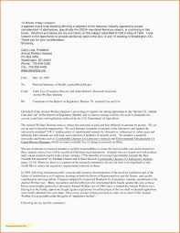 Recommendation Letter For Mba Candidate Hellojames Me