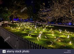 Botanical Gardens Nights Of Lights Light Exhibits During Vivid In The Sydney Botanic Gardens At