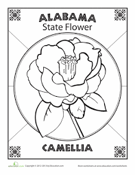 Small Picture Alabama State Flower Alabama Worksheets and Flower