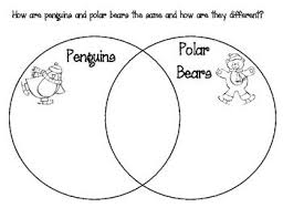 venn diagrams  polar bears and penguins on pinterestlike the idea of the venn diagram comparing animals in arctic and antarctic  and between