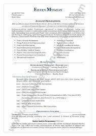 Functional Resume Format Example Elegant Functional Resume Format