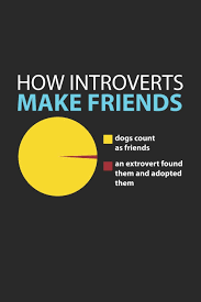 Introvert Chart How Introverts Make Friends Introvert Funny Extrovert Adc