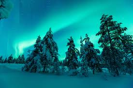 Glass Igloo Northern Lights Hotel Kakslauttanen Saariselka Finland Booking Com