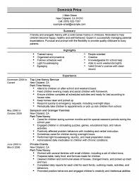 Famous Resume Plural Pictures Inspiration Examples Professional