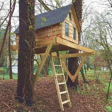 tree house plans for two trees.  Trees Alpino Treehouse DIY Plans For One Or Two Trees Throughout Tree House Plans For Two Trees Pinterest