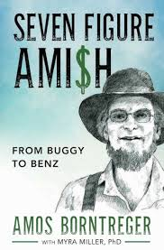 Seven Figure Ami$h: From Buggy to Benz by Myra Miller, Amos Borntreger,  Paperback | Barnes & Noble®