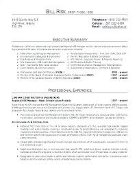 Executive Summary Resume Examples Delectable Resume Executive Summary Examples Foodcityme