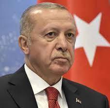 Türkei: Recep Tayyip Erdogan geht hart gegen deutsche Kritiker vor - WELT