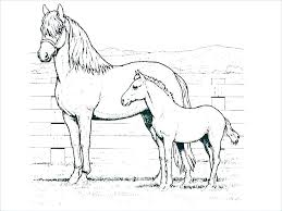 Free Horse Coloring Pages Free Horse Coloring Pages Free Printable