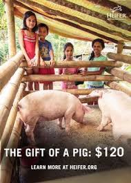 farm s donation heifer international charity ending hunger and poverty
