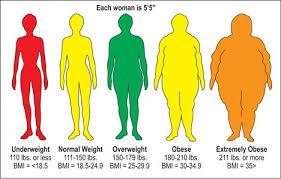 Body Mass Index Bmi Hi Fitness Club