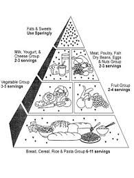 Small Picture 46 best nutrition images on Pinterest Food groups Nutrition and
