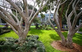 yerba buena gardens in san francisco is bartable