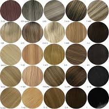 Buy Human Hair Color Www Virtual Dublin Net