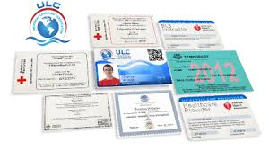 Lifeguard Certification Online Course