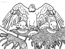 Small Picture Ideas of Bald Eagle Coloring Pages To Print Also Form