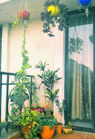 Small Picture balcony garden Pinteres