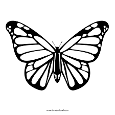 Butterfly Patterns Printable New Design