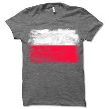 Polish Flag T Shirt Poland Flag Gift In 2019 Products