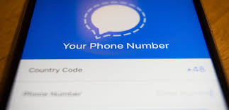 How to change your phone number on the Signal messaging app on an iPhone or  Android device | Business Insider México