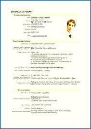 Model Resume Sample Model Of Resume For Job Model Resume Format Pdf Download Awesome 60 51